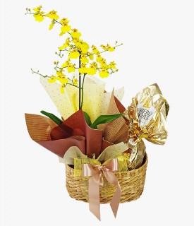 Cesta com Ovo de Páscoa Ferrero e Orquídea Chuva de Ouro