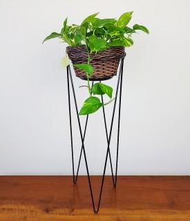 Suporte de ferro para Plantas - TRIO para chão