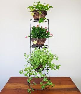 Suporte de Ferro para 03 vasos de plantas
