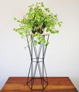 Suporte de Ferro Sextavado para Plantas