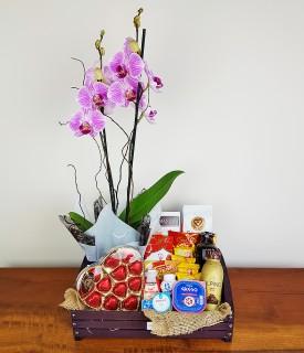 Cesta de café, chocolate e Orquídea Com Amor