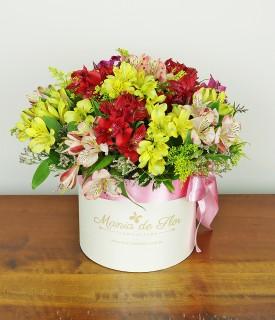 Box de Flores Alstroemérias - Special for me