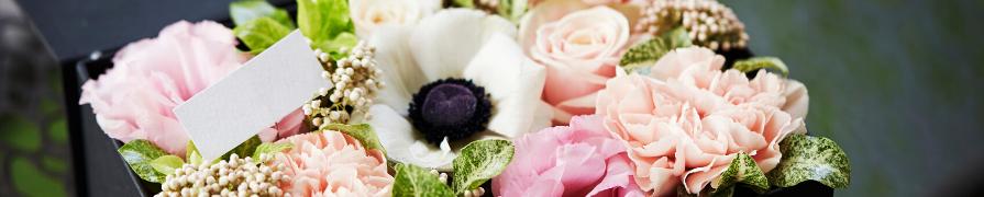 Box de Flores | Mania de Flor