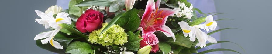 Coleção Mix Floral   Mania de Flor