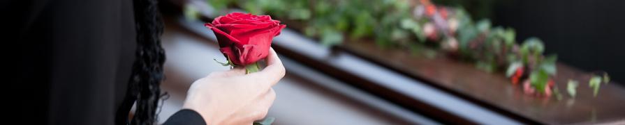 Coroa de Flores | Mania de Flor